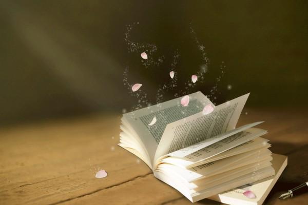 幼儿教师资格证考试大纲:保教知识与能力